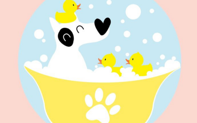 Bubble Bath Day – January 8