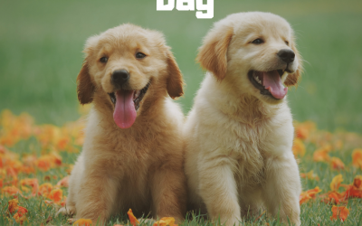 National Puppy Day is March 23!