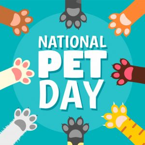 Paws Up for National Pet Day – April 11