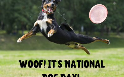 Woof! It's National Dog Day!