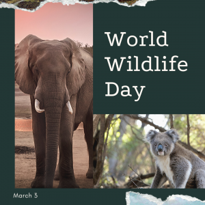 World Wildlife Day is March 3!