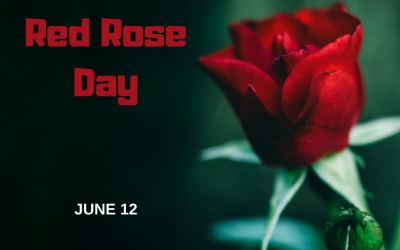 National Red Rose Day (June 12)