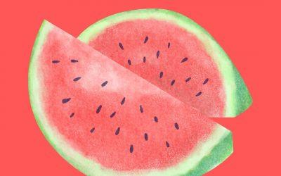 Watermelon Day! – August 3
