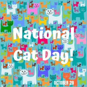Meow! It's National Cat Day! (Oct. 29)