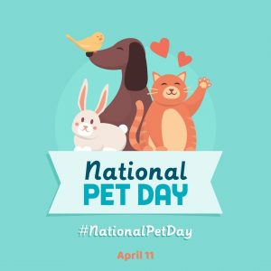 April 11 is National Pet Day 2021!